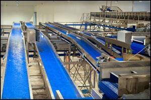 Metal fabrication of conveyors for food production factory